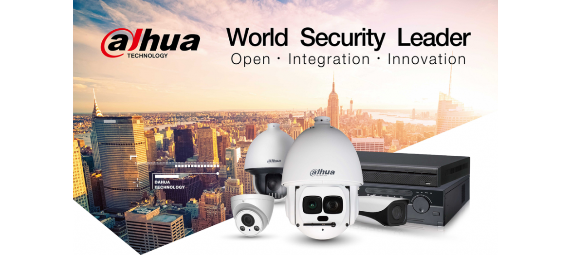 Dahua Security observation